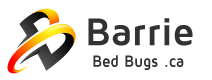 Barrie Bed Bugs .ca Logo